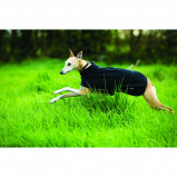 Abbildung von Amigo Hundedecke Fleece Black Small