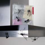 Afbeelding van Insect magneten (set van 4) Kikkerland