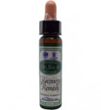 Afbeelding van Ainsworths Recovery Remedy 10ml