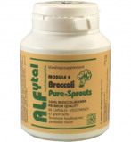Afbeelding van Alfytal Broccoli Pure Sprouts Capsules