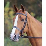 Obrázek Aviemore Bridle Plain Havana Pony