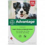 Afbeelding van Advantage Dier hond 250 4 Stuks