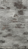 Afbeelding van Dutch Wallcoverings Exposure EP6102 (Met Gratis Lijm!)