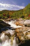 Afbeelding van Ausable Rivier New York Poster 61x91.5cm Natuur Posters