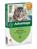 Afbeelding van Advantage 40 Anti vlo Hond tot 4 kg pipetten 0,4 ml