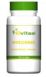 Afbeelding van Elvitaal Krill Olie 500 Mg, 180 capsules