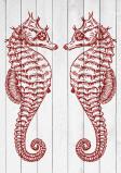 Afbeelding van 2 Zeepaardjes Rood Zee Kunst