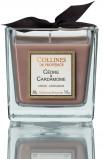 Afbeelding van Collines de Provence Geurkaars Ceder 200GR