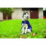 Imagem de Amigo by Horseware Dog Lead Blue Large