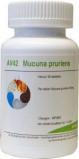 Afbeelding van Balance Pharma Av42 Mucuna Pruriens, 60 Veg. capsules