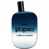 Afbeelding van Comme des Garçons Blue Cedrat 100 ml eau de parfum spray