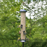 Image of Adventurer 6 Port Seed Feeder