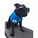 Image of All For Paws Bandana Chill Out S