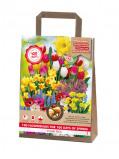Image of 100 Days Flowering Package