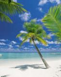 Afbeelding van Ari Atoll 4 delig Fotobehang 184x254cm Natuur