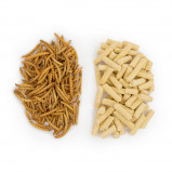 Image of 50/50 Mealworm and Suet Pack