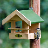Image of Amazon Seed Feeder
