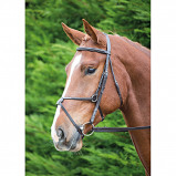 Image of Aviemore Bridle Mexican Black Cob