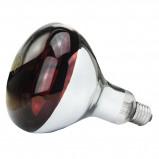 Afbeelding van Lamp 250 W/rood Hard Glas