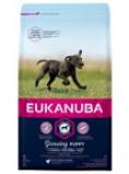 Abbildung von 15 kg Eukanuba Puppy Large Huhn (2er Sparpack)...