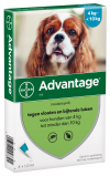 Afbeelding van Advantage Hond 100