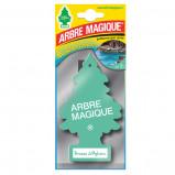 Afbeelding van Arbre Magique luchtverfrisser 12 x 7 cm Brezza Di Mykono groen