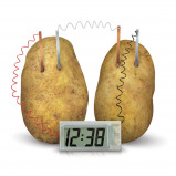 Afbeelding van 4M Kidzlabs GREEN SCIENCE potato clock