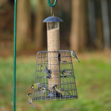 Image of Adventurer 6 Port Seed Feeder with Guardian