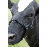 Bild av Agradi Cow halter adjustable wide Black