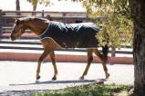 Image of Amigo by Horseware Amigo Walker 200g Black/silver S