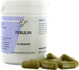 Afbeelding van Holisan Febulin, 60 capsules