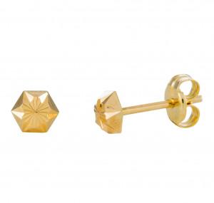 Afbeelding van 14 Krt Gouden Oorbellen 5.0 mm Gediamanteerd 206.0461.05