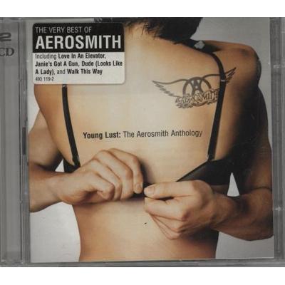 Image of Aerosmith Young Lust The Aerosmith Anthology 2001 UK 2 CD album set 493119 2