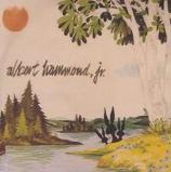 Image ofAlbert Hammond Jr. Yours To Keep UK CD R acetate RTRADCDP338