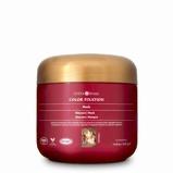 Afbeelding vanSurya Brasil Color Fixation Haarmasker, 225 ml