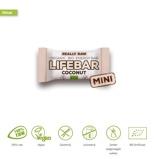 Afbeelding vanLifefood Mini lifebar energiereep kokos raw & bio (25 gram)