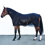 ObrázekSportz vibe ZX Horse Rug Black Small