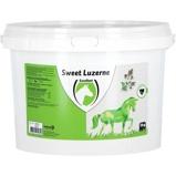 Abbildung vonExcellent Sweet Luzerne 3kg