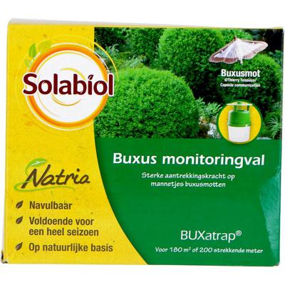 Obrázek Bayer Monitoring Traps Buxatrap Boxwood 1 Pcs