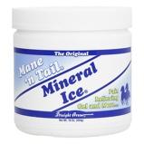 ObrázekMane 'n Tail Mineral Ice 454ml