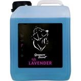 Bild avGroomers Secret Shampoo Lavender + Pump 2,5L