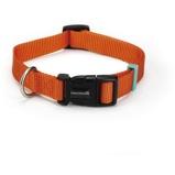 Abbildung vonBeeztees Nylon Halsband Uni Orange 26 40cmx15mm