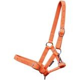 Abbildung vonHarrys Horse Fohlenhalfter Orange