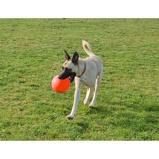 ObrázekJolly Ball Bounce n Play Blueberry 15cm