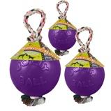 ObrázekJolly Ball Romp n Roll Purple 10cm
