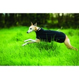 Abbildung vonAmigo Hundedecke Fleece Black Large
