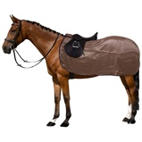 ObrázekGlobal Anti fly Exit Rug with a Cut out Olive Sheen Navy L