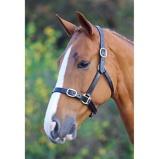 Imagem deBlenheim Headcollar Fully Adjustable Leather Black Cob