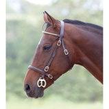 Imagem deBlenheim Bridle Clincher Inhand Black Full