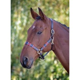 Imagem deBlenheim by Shires Head Collar Polo Leather Red/Navy Cob